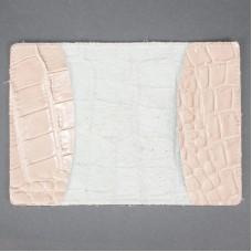 Обложка для паспорта FNX-PVS-001 натуральная кожа бежевый скат   (276)